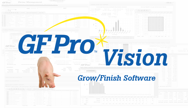 GF Pro Vision Software