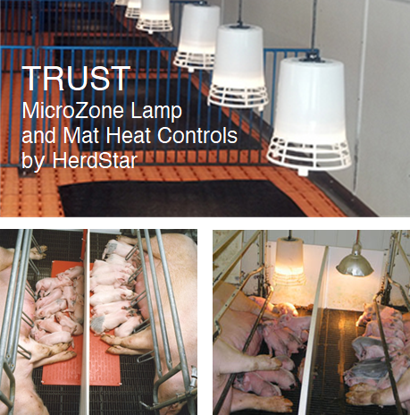 MicroZone Heat Lamp & Mat Controls